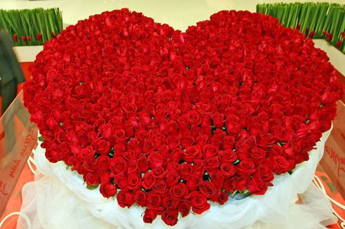 500 Valentine red roses heart