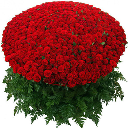 1000 Valentine red roses arrangement