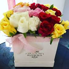 25 mix color roses in a box