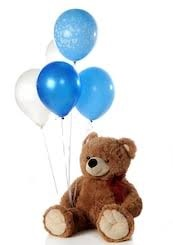 5 Gas filled Blue Balloons tied to 12 Inches brown Teddy bears hand