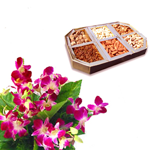 250 gm Dry fruits and 6 orchids