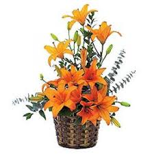 lilies arranged in a basket