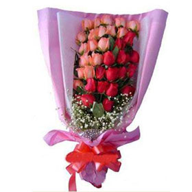24 pink red roses bouquet