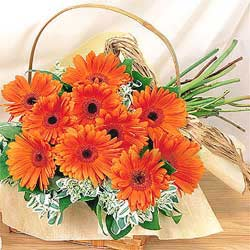 24 gerberas in a basket.
