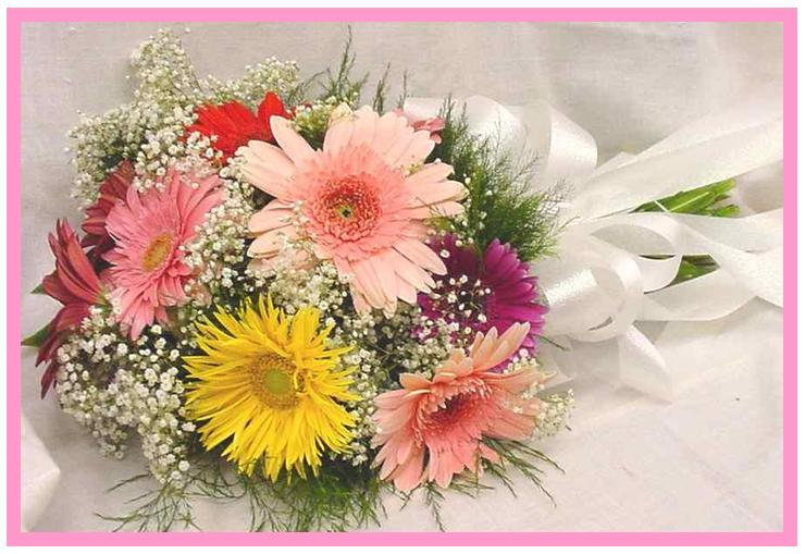 12 Gerberas in a bouquet