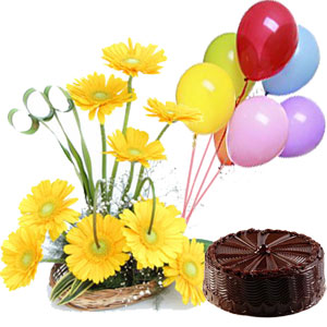 1 pound Cake 3 balloons and 12 gerberas.