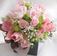 20 light pink roses