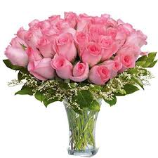 24 pink roses in a glass vase