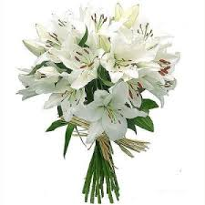 A bouquet of white lilies