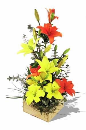 Mix Lilies in a basket