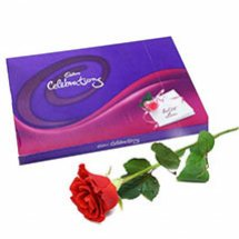 Cadburys celebration with 5 red roses