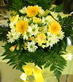 30 white gerberas in a vase