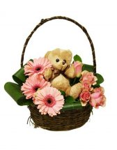 Teddy bear inches 8 short stems of pink gerberas pink roses in Basket