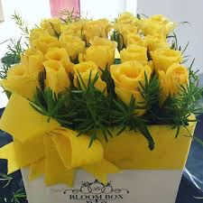 25 yellow color roses in a box